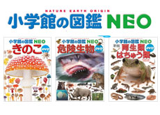 20170820_nagano_s