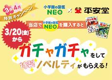 202003_neo_s2